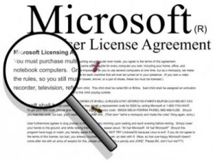 Contratti e Licenze Software Microsoft - End User License Agreement
